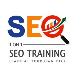 1ON1 SEO Training Logo