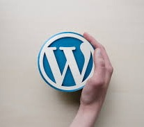 WordPress meetup group classes